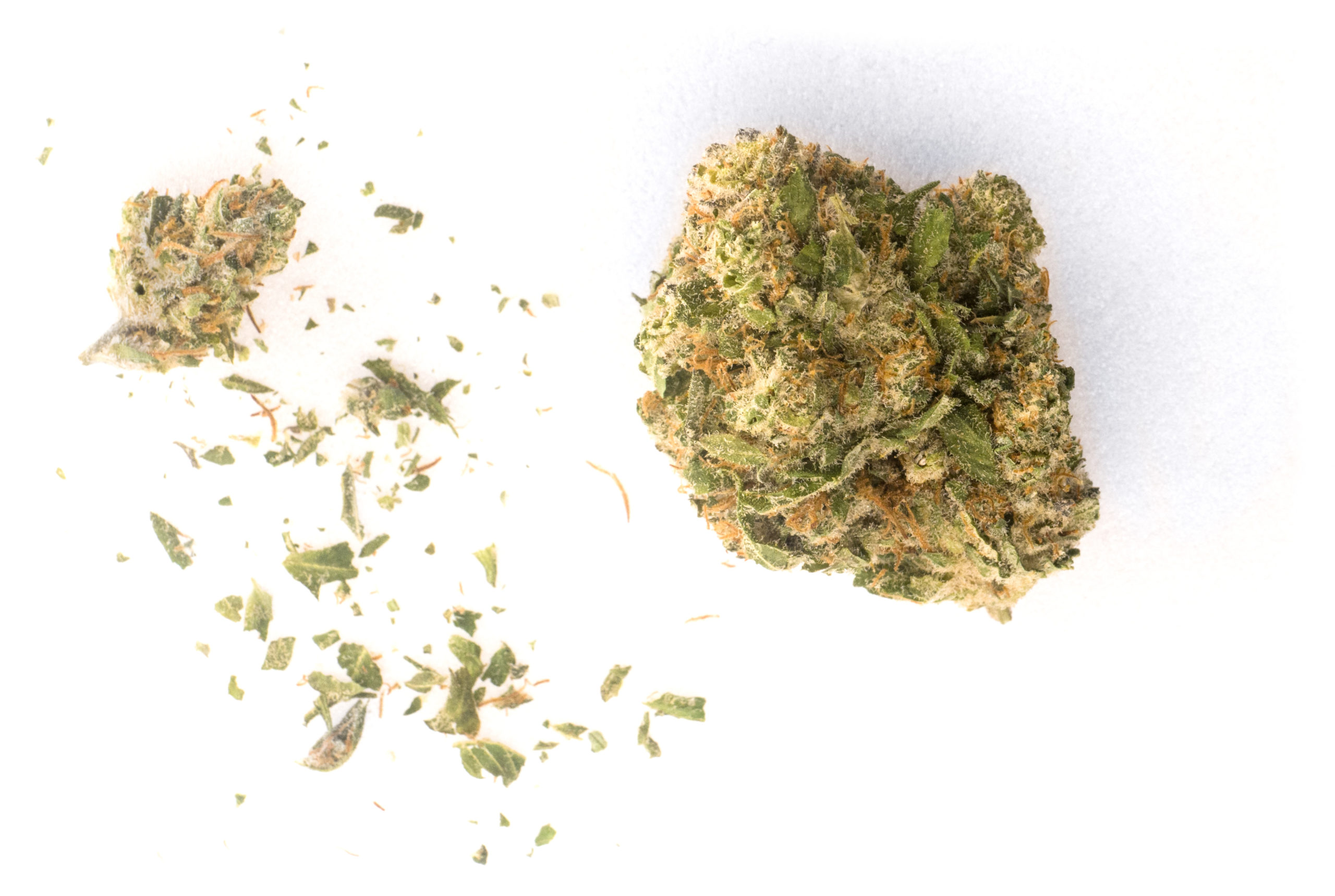 Star CBD unboxed, showing one well trimmed large bud, a very small bud, and a bit of shake.