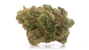Bud of Pedro's Sweet Sativa