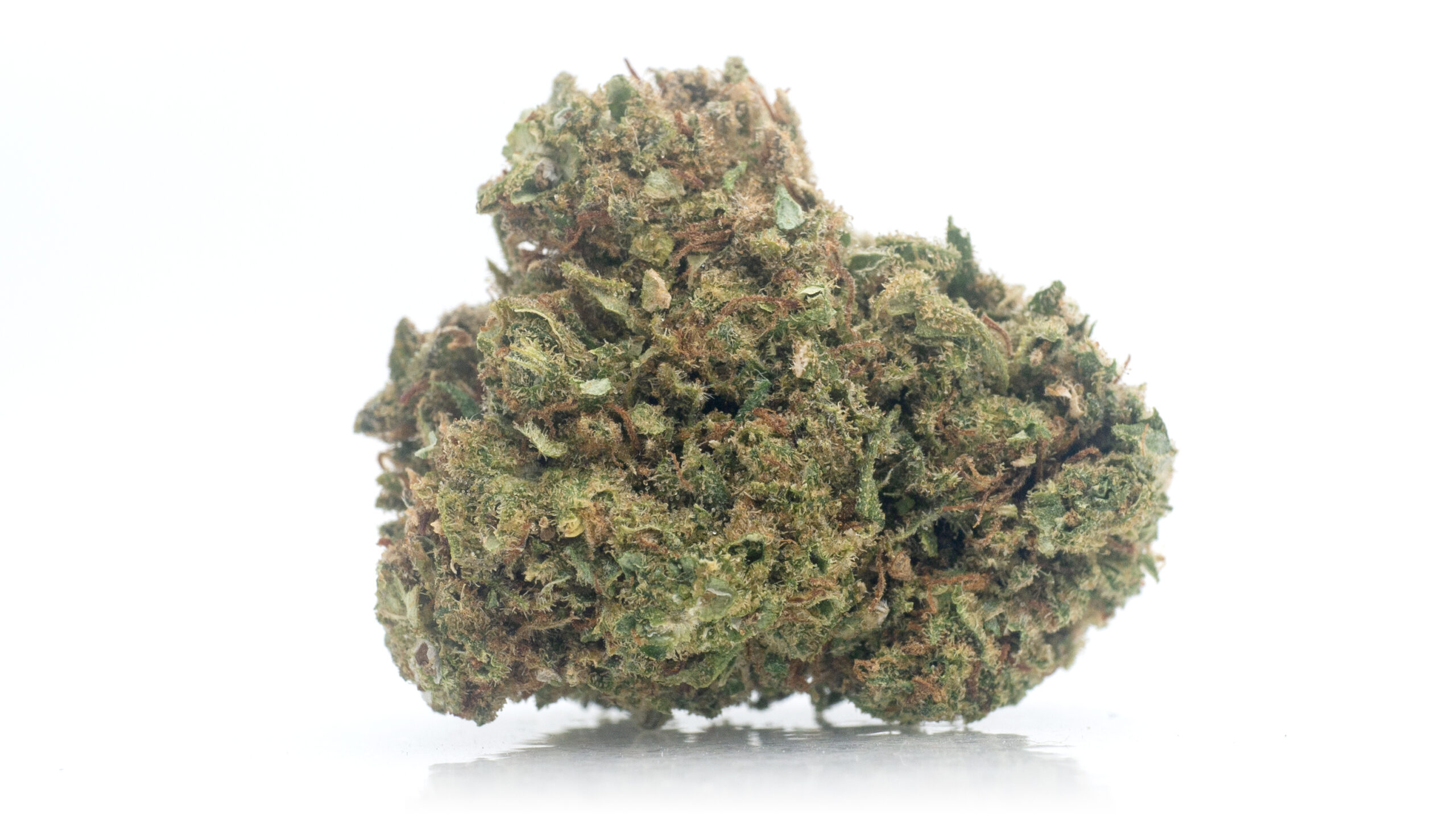 Tightly trimmed bud of Simply Bare's Charlotte CBD